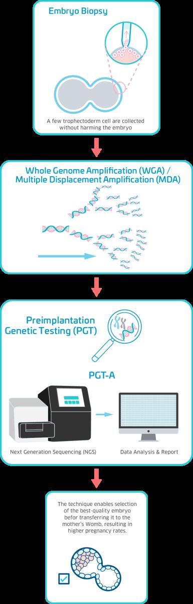 PGT-A
